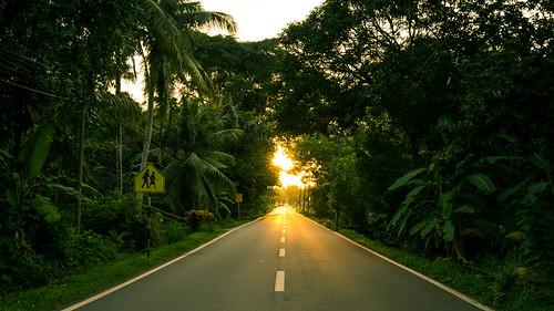 nibongtebal pulaupinang malaysia my sonya7ii sonyalpha sonnartfe2835 sony scenery sunset kampung penang open road village rural jungle