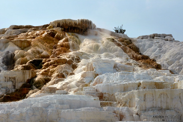 Mammoth Hot Springs Terraces - Yellowstone National Park, Wyoming
