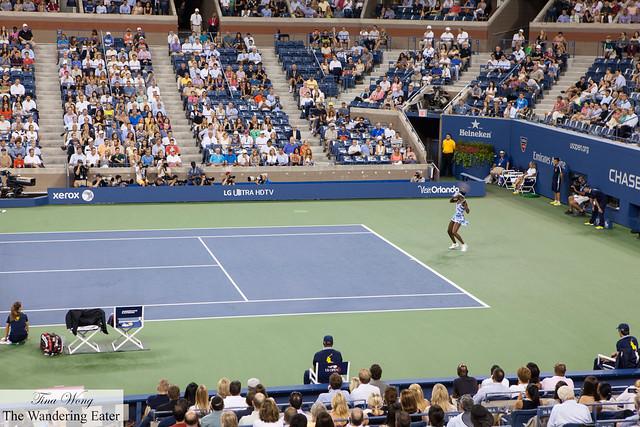 Venus Williams playing