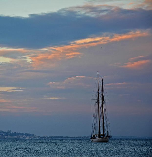 La lingua non è sufficiente a dire e la mano a scrivere tutte le meraviglie del mare
