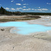 Scummy Pool (Porcelain Basin, Norris Geyser Basin, Yellowstone Hotspot Volcano, nw Wyoming, USA)