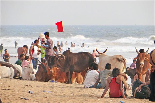 Une plage de Goa (Inde)