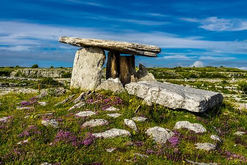 countryside tomb landscape landschaft landmark grasland sky burren dolmen countyclare irland ie grab nature flower natur clouds wiese steinkreis stones gras meadow feld wolken himmel