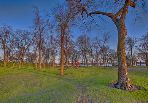 park trees sunset alexandria minnesota