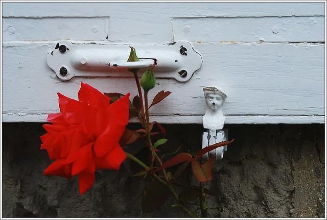 1 - Longpont Rue des Tourelles Fleurs Le petit homme et la rose