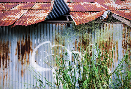 barn rural tin graffiti rust decay steel shed corrugated