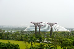 Gardens by the Bay - 06