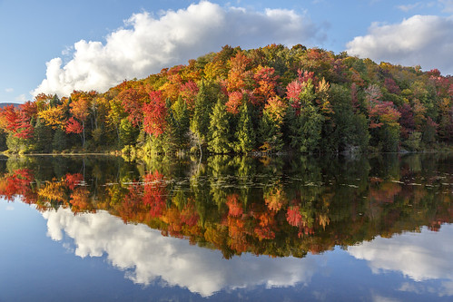 Vermont 2016 Foliage | by Richard Ricciardi