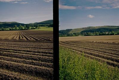 olympus PEN EE2 farming today-00024