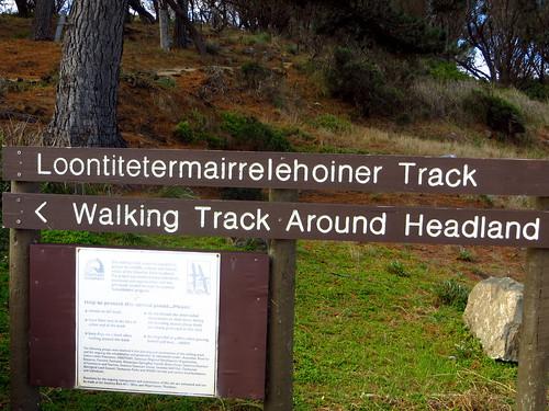 swansea track australia tasmania placename loontitetermairrelehoiner loontitetermairrelehoinertrack trackloontitetermairrelehoiner loontitetermairrelehoinerloontitetermairrelehoiner