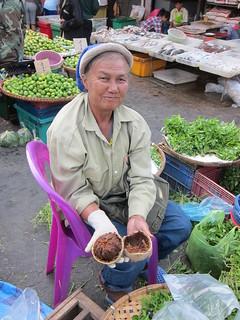 wood Apple Thai มะขวิด