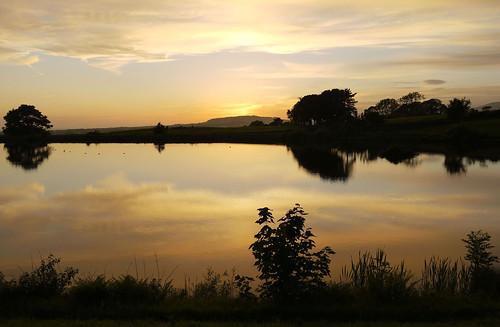 trees sunset summer june clouds reflections evening quote ducks lancashire beaconfell longridge ribblevalley toplodge tootleheightsreservoir