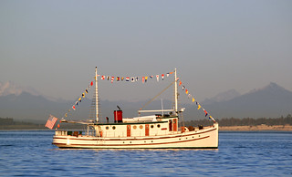 IMG_3683CE1 - Port Townsend WA - 2014 Wooden Boat Festival - MV TEAL at anchor | by BlackShoe1