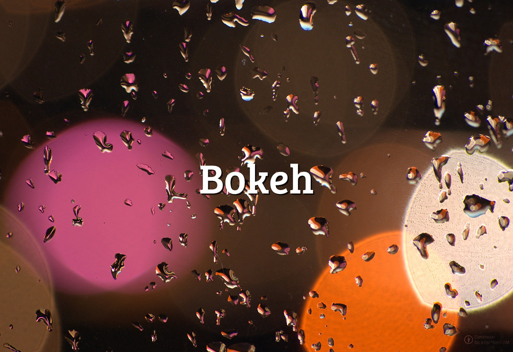 #FlickrFriday: Bokeh | Blur but fascinating. Open your aperture of lens to the maximum level and get these cool and warm images. Share the best #bokeh shot from your Flickr account to @flickr and add #FlickrFriday!