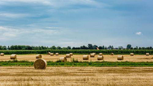 summer germany deutschland farm harvest hay agriculture mönchengladbach