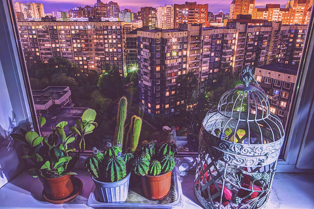 Evening cityview from the window