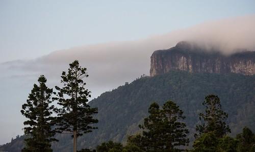 mountain cloudcap mountlindesay jalgumbun australianmountains hooppines rainforest dairyflat richmondvalley northernrivers nsw australia landscape