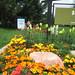 Bear Creek Park flower bed 2