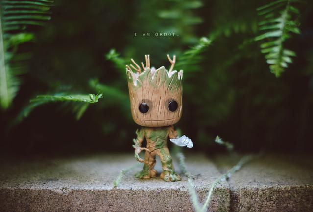 I Am Groot [Explored]