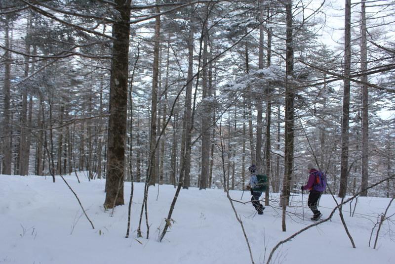 2014-01-19_00058_入笠山