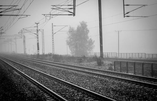Misty tracks B&W | by tomilattu