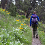 Emily hiking the Beaver Pond Trail