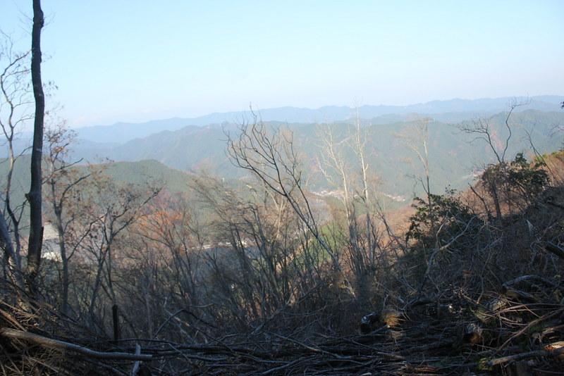棒の折山 下山