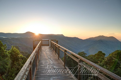 sunrise rainforest australia lookout nsw newsouthwales boardwalk hdr skywalk dorrigo dorrigonationalpark nikond90
