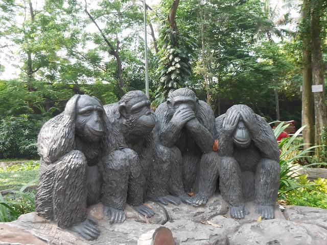 土, 2014-05-17 20:21 - 動物園 四猿