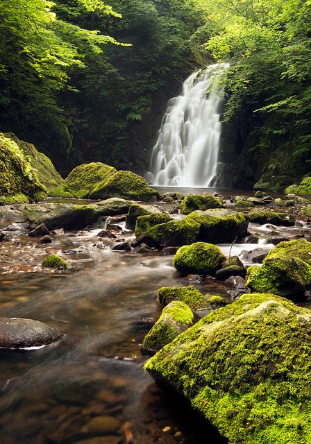 Glenoe Falls, Northern Ireland