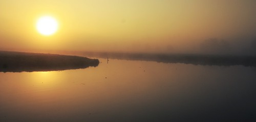 sunlight sunshine sun sunrise polder netherlands water trees silhouettes landscape nature land grass mist dew panorama
