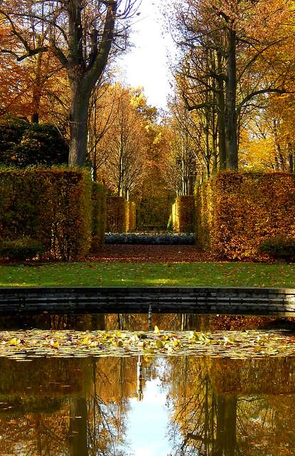 Reflected Autumn / Gespiegelter Herbst