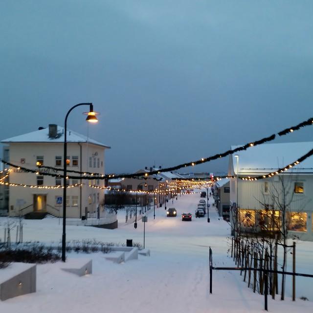 Arctic daylight