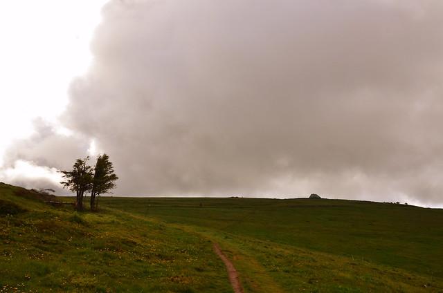 Le Hohneck à l'horizon (alt: 1363m)  - Hohneck on the horizon  (EXPLORE)