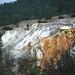 Glen Spring (Mammoth Hot Springs, Yellowstone Hotspot Volcano, nw Wyoming, USA)
