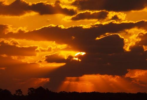 sun florida stuart pasture rays radiate martincounty