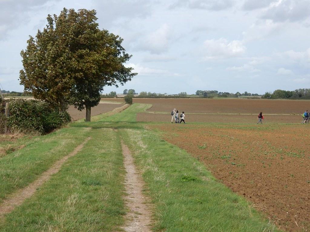 Onto the Burying Way Ely Circular