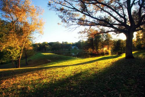 autumn color landscape gastonia northcarolina inmybackyard dorameulman beautiful fall outdoor