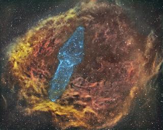 Ou4 the Giant Squid Nebula