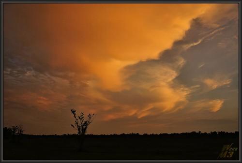 park lighting sunset sun nature clouds landscape texas sony houston thunderstorm rays a57 wanam3 elfrancoleepark sonya57