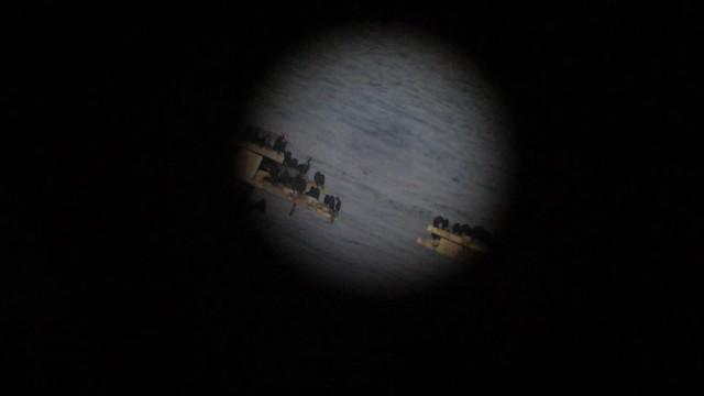 MVI_3311 cormorant bird islands goleta via telescope at bacara