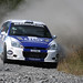 Merrick Stages Rally