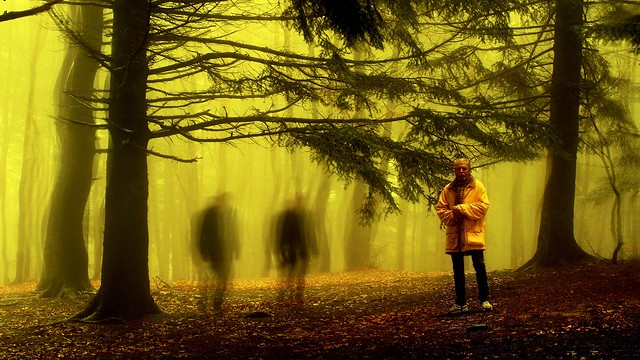 Ted nel bosco dei fantasmi - Pratomagno