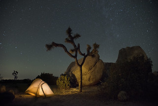 Glowing tent in Ryan Campground | by Joshua Tree National Park