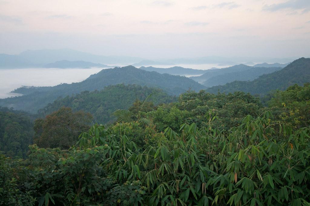 Kaeng Krachan national park, Thailand | Kaeng Krachan Nation… | Flickr