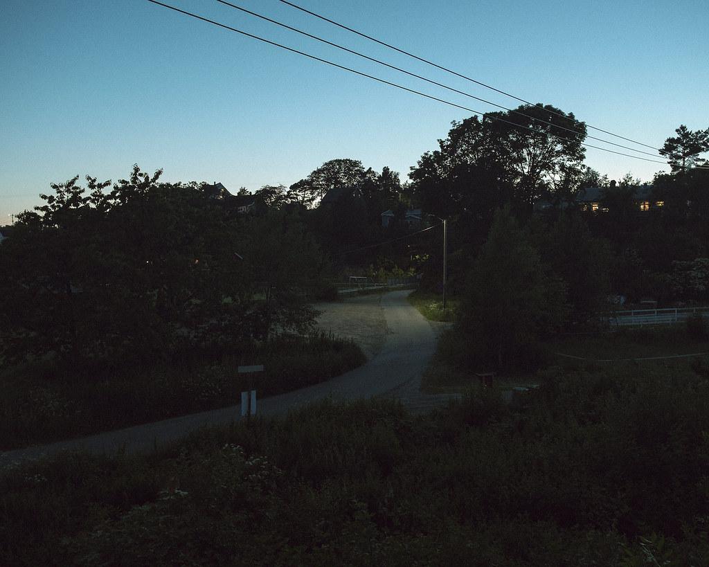 Gravel road underneath trees in fading light of dusk.