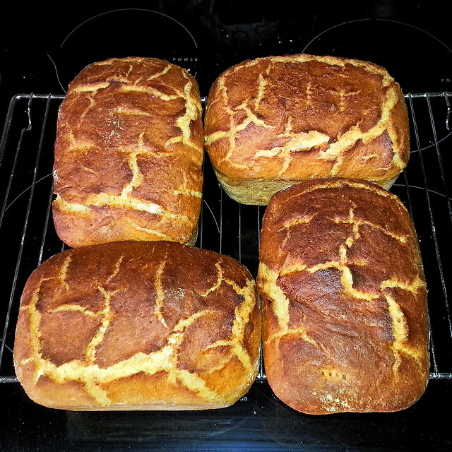 140629 Bread with a pattern