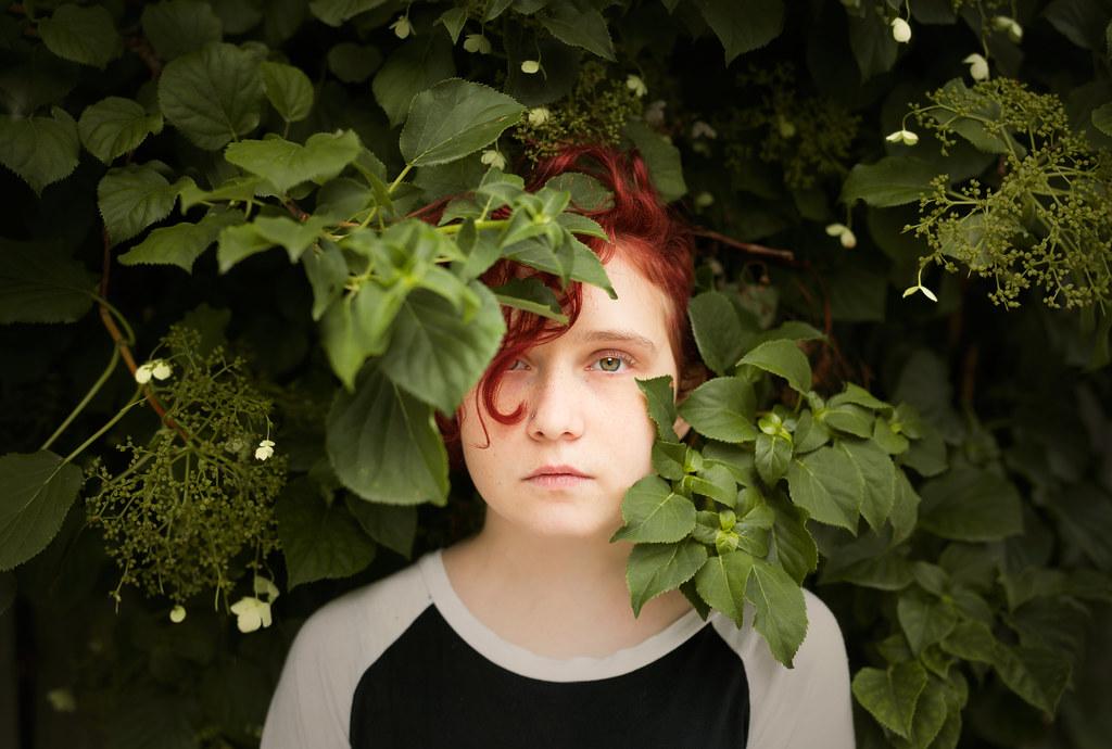 of leaf and vine