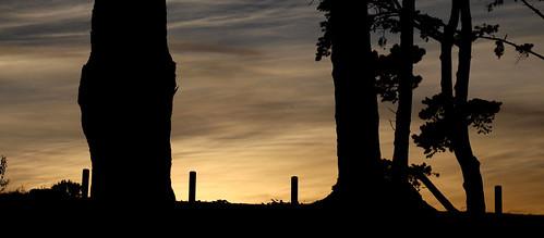 nature sunrise reserve western cape tygerberg