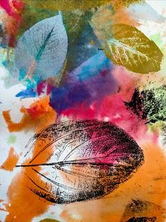 The Leaves | by Thad Zajdowicz